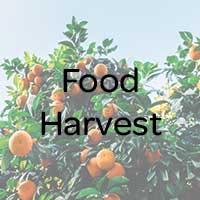 Heuch Food Harvest